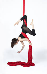 introduction to basic fundamental aerial arts using aerial silks and lyra  improve your upper body core and flexibility while having     pole dancing pole fit revolution  rh   polefitrevolution